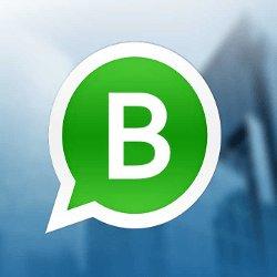 Whatsapp Para Negocios